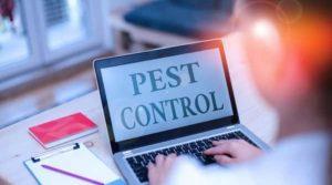 Commercial Pest Services